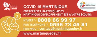 Info_martinique-developpement-1